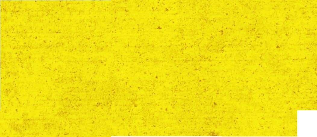 Daniel Neihoff